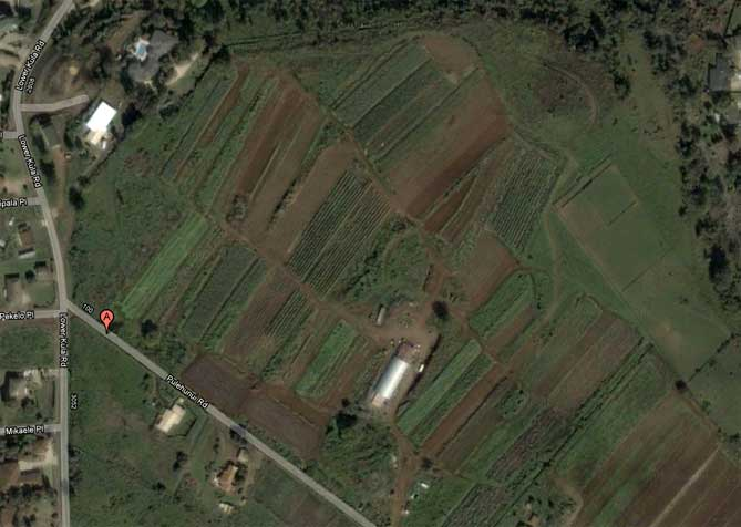 Aerial view of Maui Nui Farm